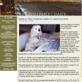 The Broadsheet Daily