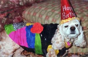Katie in her Birthday Hat