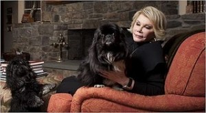 Joan and her Dogs