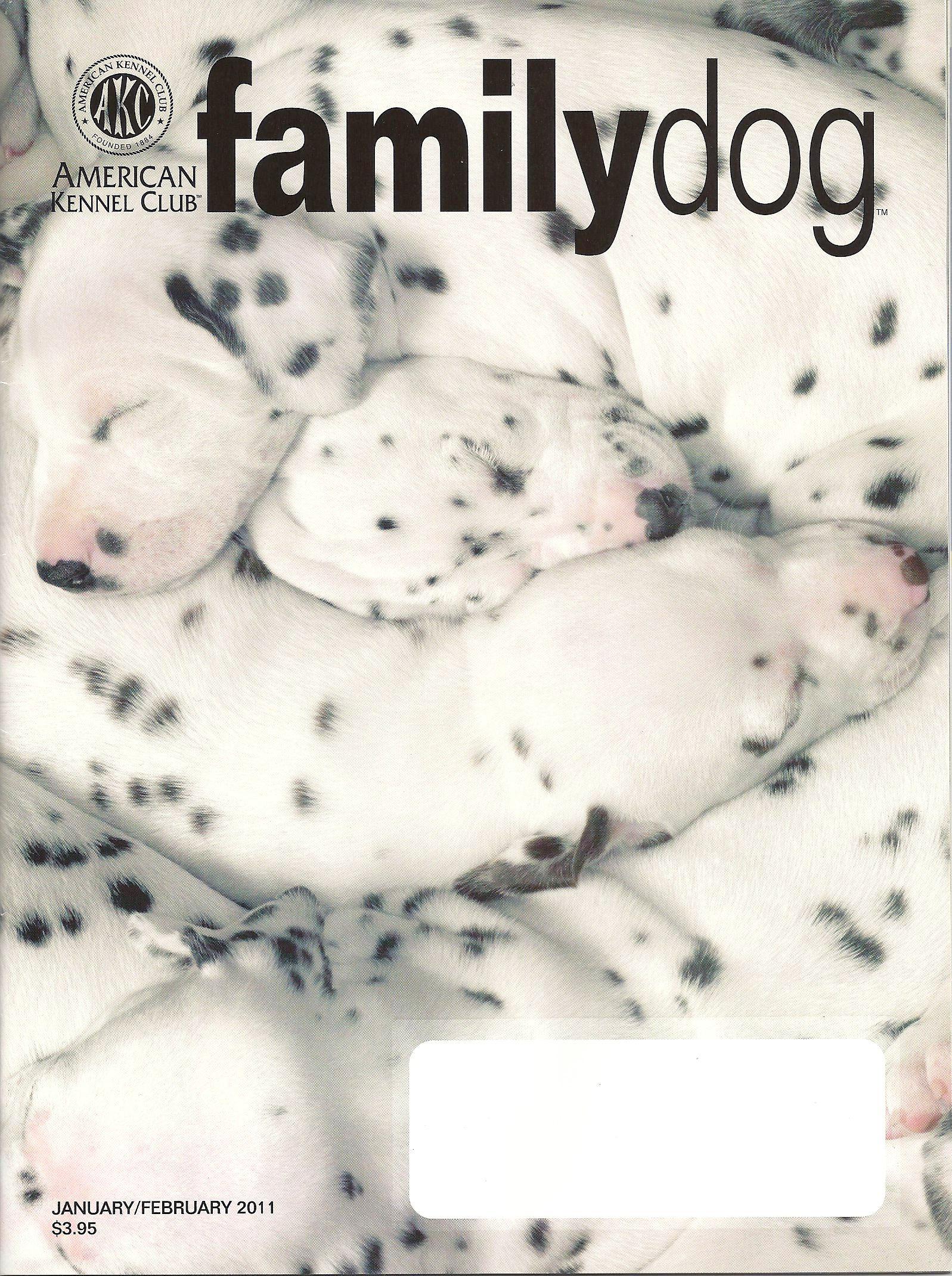 Magazine Family Dog Family Dog Magazine is